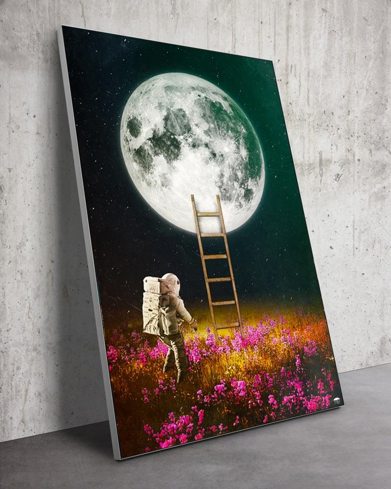 Huge Moon in a Flower Field Wall Art Huge Decor Prints